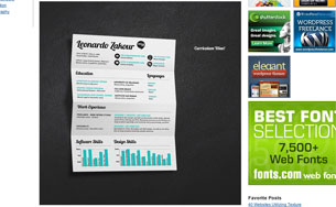 35-Brilliant-Resume-Designs-at-DzineBlog.com---Design-Blog-&-Inspiration