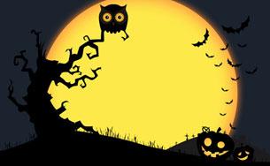 Halloween-2010-184328889