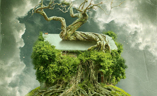 tree_barn