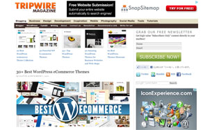 30+-Best-Wordpress-eCommerce-Themes---tripwire-magazine
