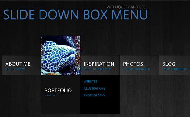 Slide-Down-Box-Menu